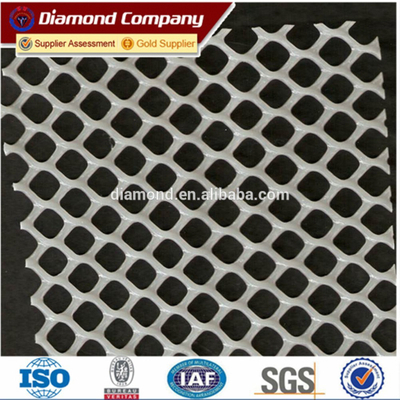 high quality plastic flat netting/ competitive price plastic flat netting/ISO factory plastic flat netting