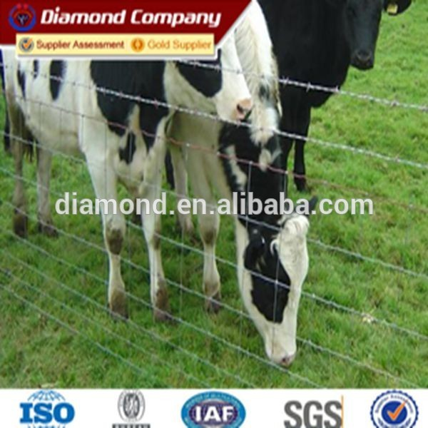 cheap electric fences for cattle for price
