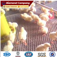 Lowest price Plastic Flat Mesh for Chicken Cultivation