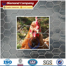 chicken hexagonal wire mesh / hexagonal chicken mesh