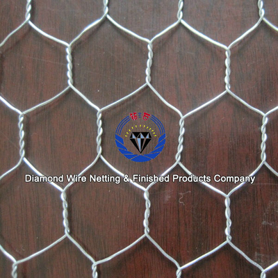 good quality hexagonal mesh and chicken mesh /low price chicken mesh