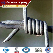 A large amount of cheap barbed wire, best barbed wire price