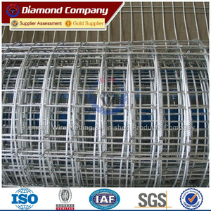 Galvanized Security Welded Wire Netting Fence Wire Mesh