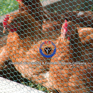 Stainless steel bird cage wire cloth mesh